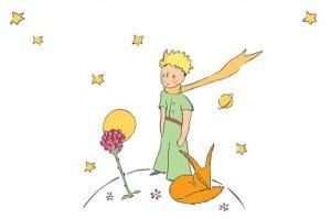 il_piccolo_principe_6