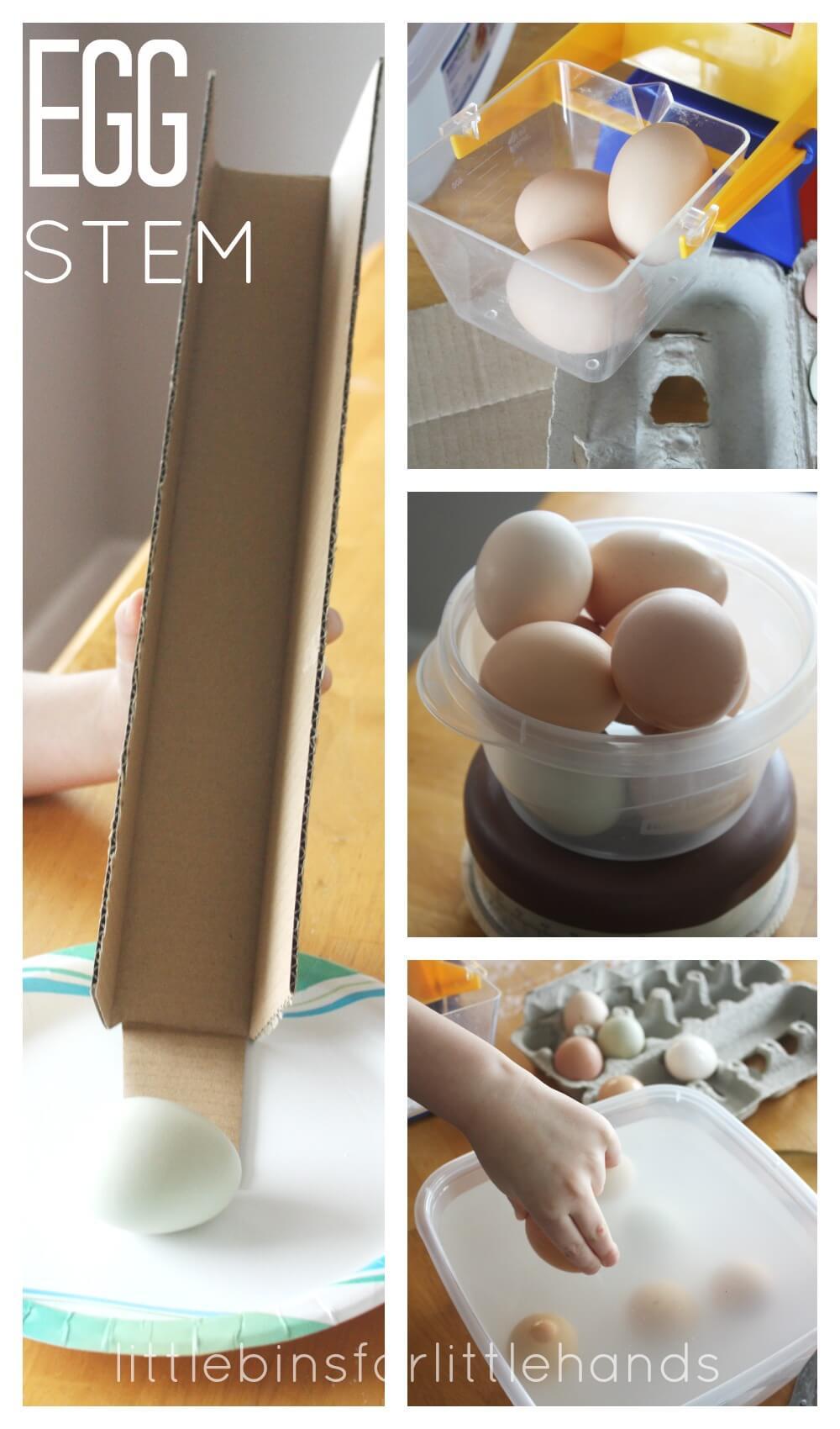 Egg Stem Real Egg Science Activities For Kids