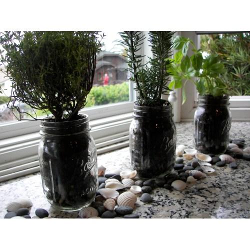 Medium Crop Of In House Herb Garden Kit