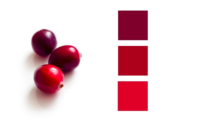 Fall Town Wallpaper Color Palette Shades Of Cranberry Little Blue Dish