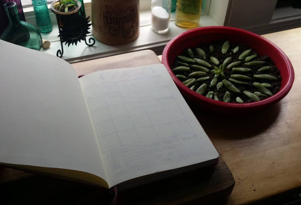 How I Conquered the First Page of my Bullet Journal blank page | Littlecoffeefox.com