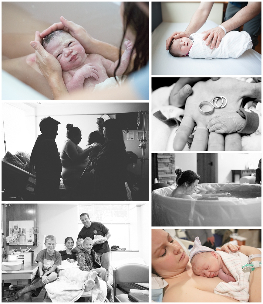 Little Earthling Photography 2015 in Review {Bellingham Photographer}