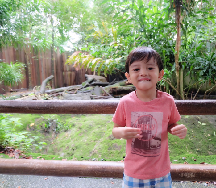 3rd Birthday at Singapore Zoo