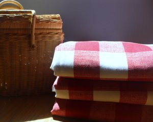 Waterproof picnic blanket via moderncabin on Etsy