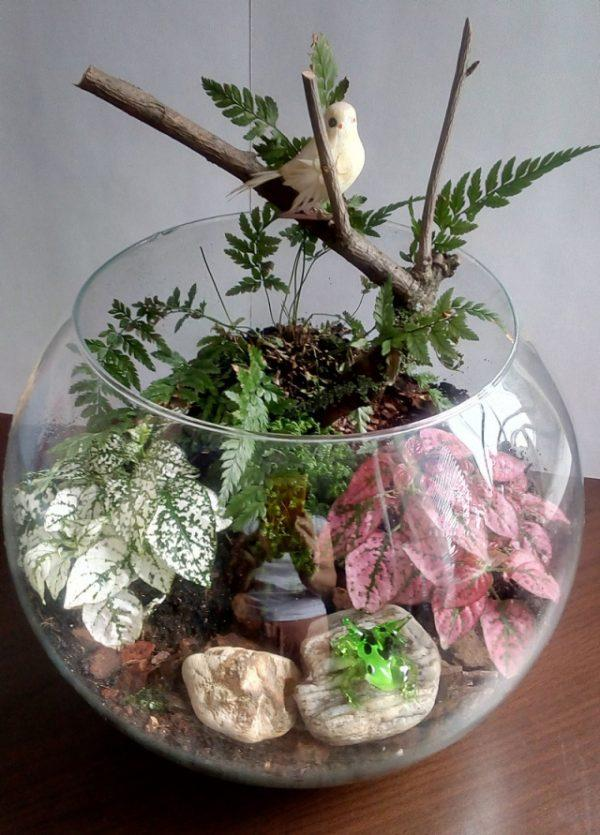In Wall Toilet Paper Storage Make Your Miniature Garden In A Glass Bowl: Ideas For
