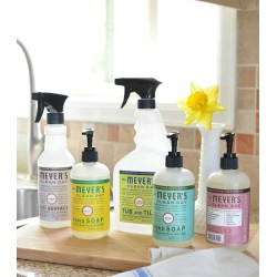 Small Crop Of Meyers Cleaning Products
