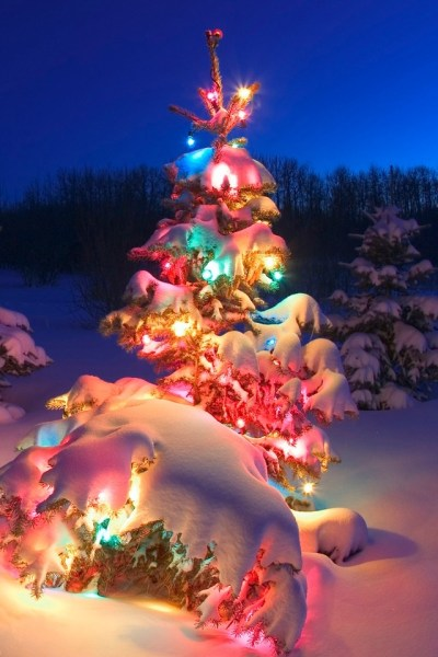 Cool Christmas Tree Iphone Hd Wallpaper, Christmas Wallpapers ~ HD Desktop Wallpaper ...