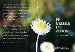 on-zenos-footsteps-book-cover-v2-1