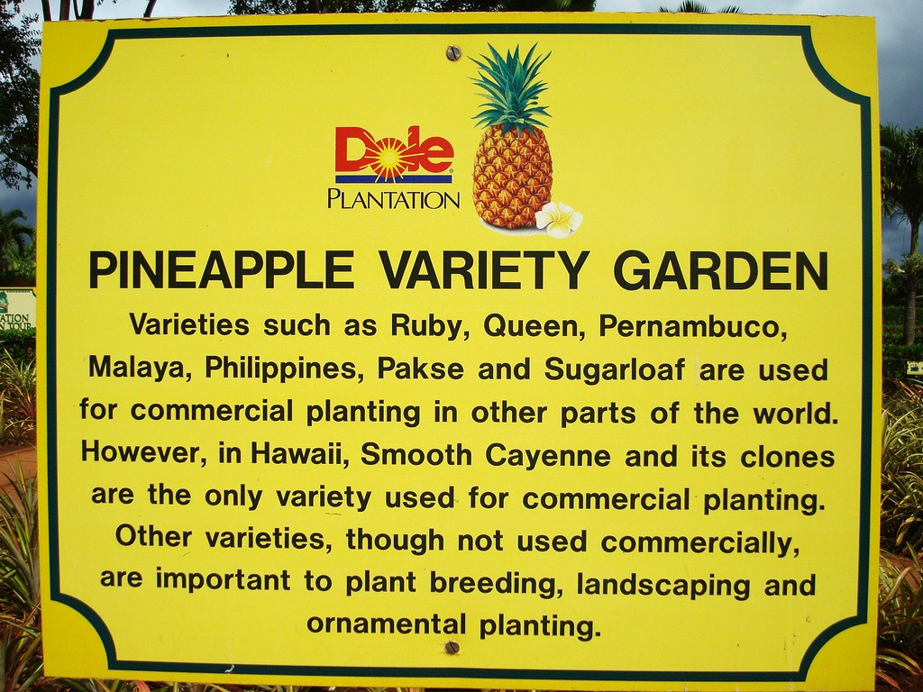 Dole Plantation Oahu Hawaii We Had A Great Time At The Dol Flickr