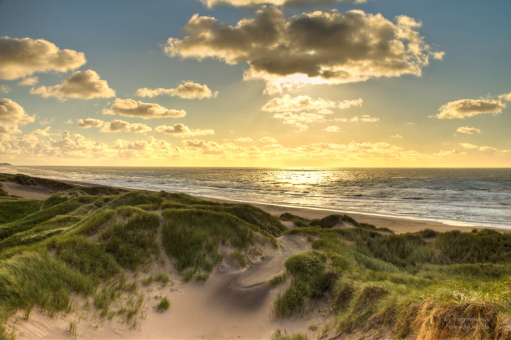 3d Sunset Wallpapers Free Golden North Sea Beach Denmark The Large Dunes