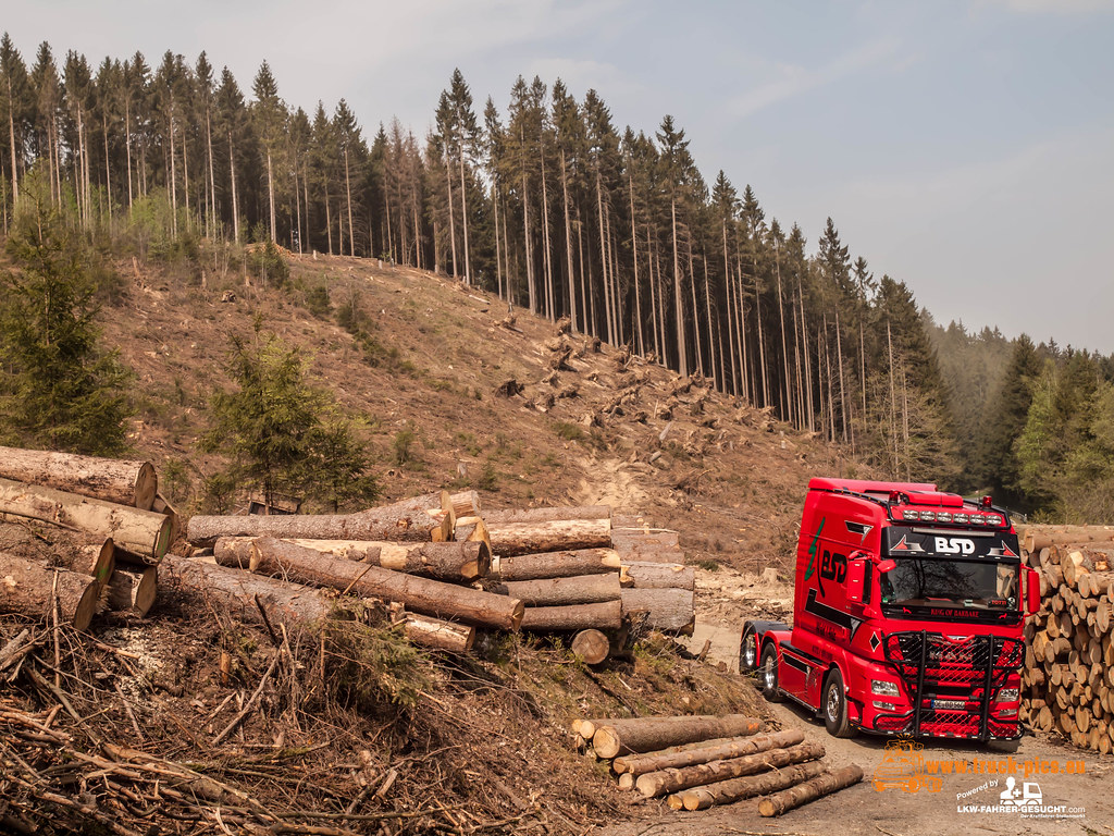 Bsd Wald Holz Truckpicsfamily Powered By Www Truck Pic Flickr