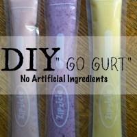 """DIY """"Go Gurt"""""""