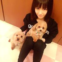 【AKB48】ぱるる、やはりかわいかった【島崎遥香】