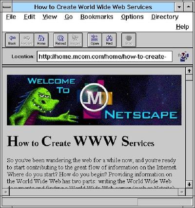 netscape1-620x662
