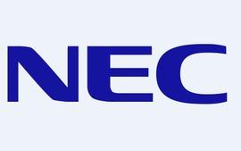 NEC、世界初、新規ナノ炭素材料の繊維状カーボンナノホーン集合体「カーボンナノブラシ」を発見