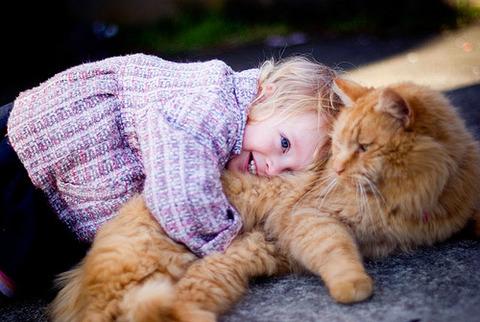 猫と赤ちゃん11