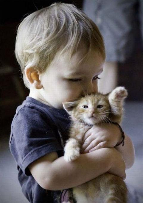 猫と赤ちゃん24