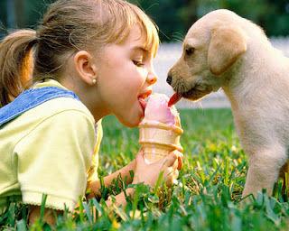 犬と赤ちゃん21