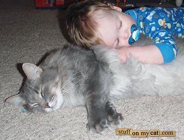 猫と赤ちゃん45