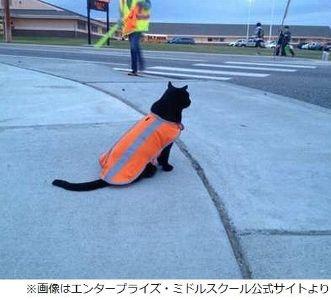 【どうぶつ/アメリカ】子供の登下校を毎日見守り挨拶も交わす黒猫、名誉指導員に