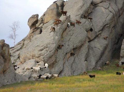 モンゴルに旅行したいと思って物価調べた結果wwwww