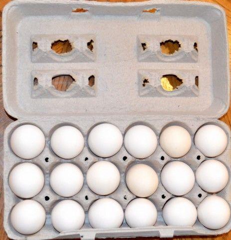 賞味期限切れた卵で片手割りの練習す奴wwww