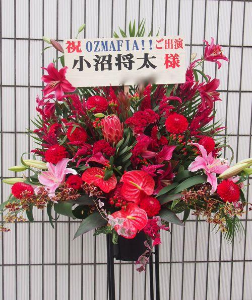 スタンド花 スタンドフラワー フラスタ カノシェ65221(1)
