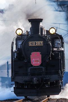 東武鉄道、蒸気機関車の復活運転目指す…JR北海道からC11借り入れ [RESPONSE]