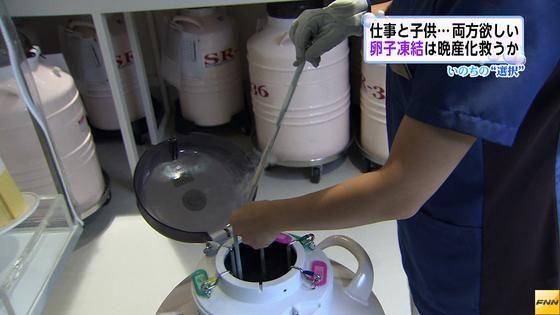 「卵子凍結」を検討…電機メーカー主任の女性(46)「本当に疲れて帰ってきて、(結婚・出産を)考える時間がない」