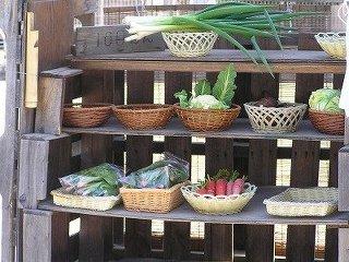 【千葉】野菜の無人販売所で窃盗 → 見張っていた警察官の指に噛み付いた老害を逮捕