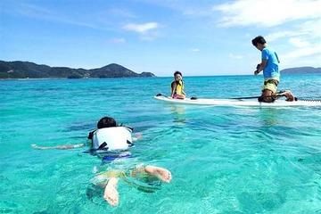 中国人に飲み込まれる…奄美大島の「中国人向け巨大リゾート計画」、地元住民の強い反対で白紙に