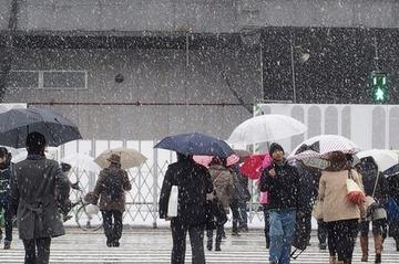 【気象】東京23区、積雪10センチの恐れ…今夜から大雪警戒