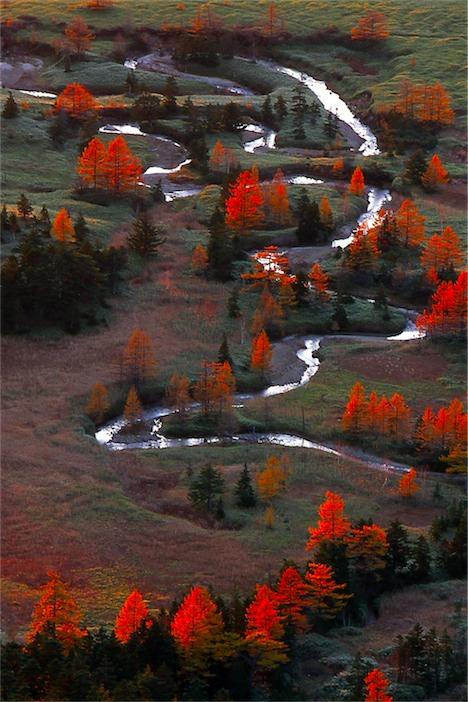 【画像】「日本一美しい村」のフォトコンテスト写真綺麗すぎワロタww