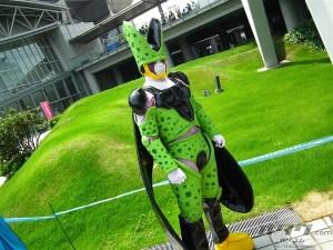 image_8181
