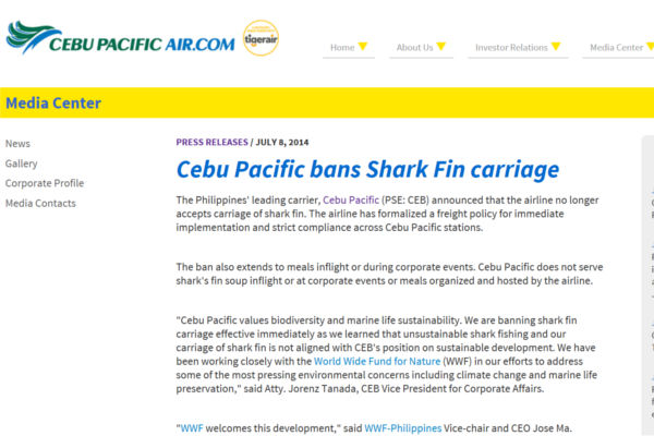 Cebu sharkfin