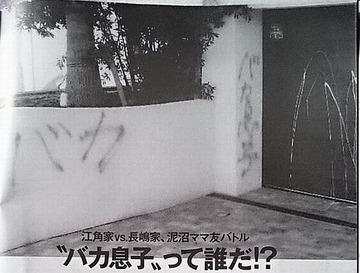 江角マキコ「マネージャーが独断で長嶋一茂の家に落書きした。立場上私にも責任がある」