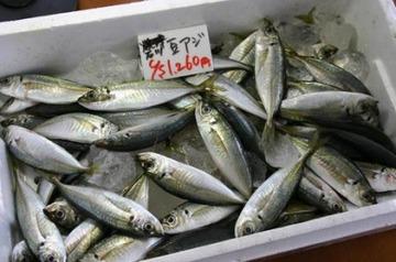 イオン大垣店の「豆あじ」にフグ混入、食べると死ぬ可能性
