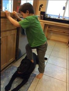 米政治家、息子が犬を踏む画像を投稿して炎上 → 「食ってないからいいだろ」と釈明して火に油を注ぐwwwww