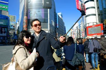 【社会】自撮り棒が観光地でトラブルのもとに…動物園の柵に入れる人も
