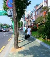 韓国「MERSに感染したら37万円あげます!安心して遊びに来て!」