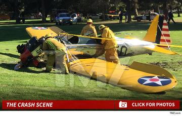 【米国】ハリソン・フォード操縦の小型機墜落がゴルフ場に墜落