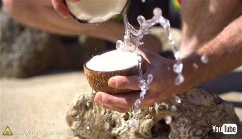 【動画あり】無人島に漂着してもこれで安心wwwwww特別な道具を使わずにヤシの実を割る方法!
