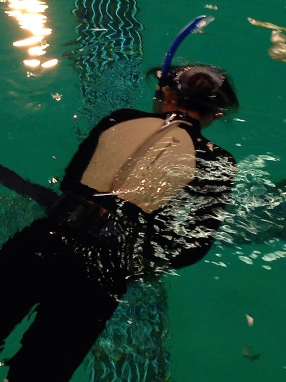 美ら海水族館で飼育員のお姉さん盗撮しちゃった