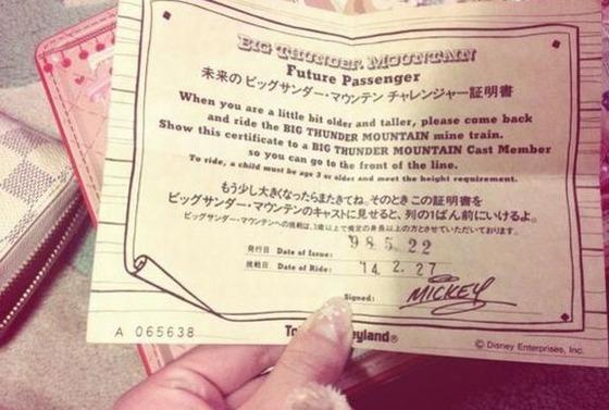 ディズニーランドが日本一な理由