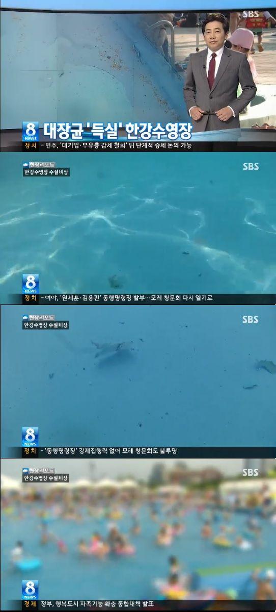 【速報】 韓国のプールがヤバすぎる!消毒液使わず・茶色の浮遊物だらけ