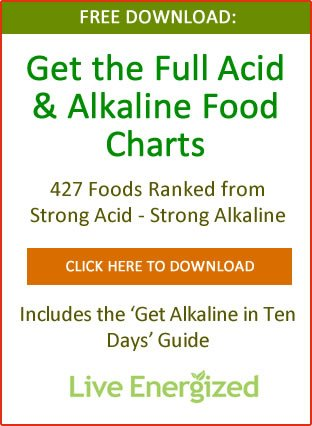 Alkaline Diet Explained  Your Plan to Make It Easy Ross Bridgeford