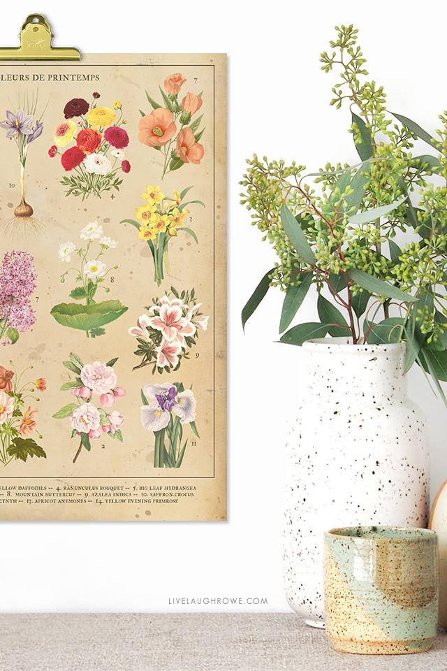 Botanical Spring Flowers Vintage Inspired 8x10 Printable