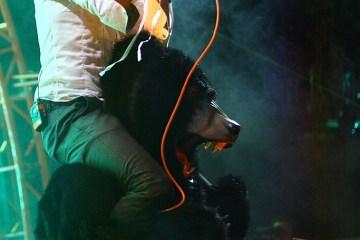 The Flaming Lips @ Nateva Music & Camping Festival