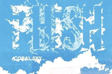 Phish Coral Sky DVD