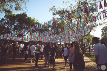 fyf-12-2